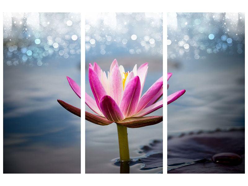 Metallic-Bild 3-teilig Lotus im Morgentau