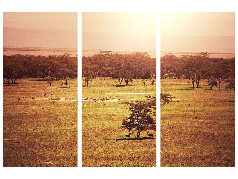 Metallic-Bild 3-teilig Malerisches Afrika