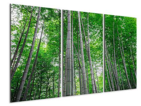 Metallic-Bild 3-teilig Bambuswald