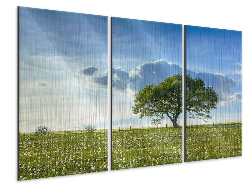 Metallic-Bild 3-teilig Frühlingsbaum
