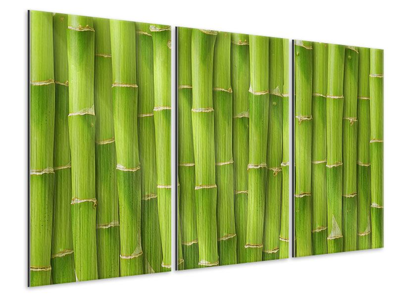 Metallic-Bild 3-teilig Bambuswand