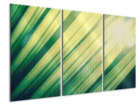 Metallic-Bild 3-teilig Beleuchtetes Palmblatt