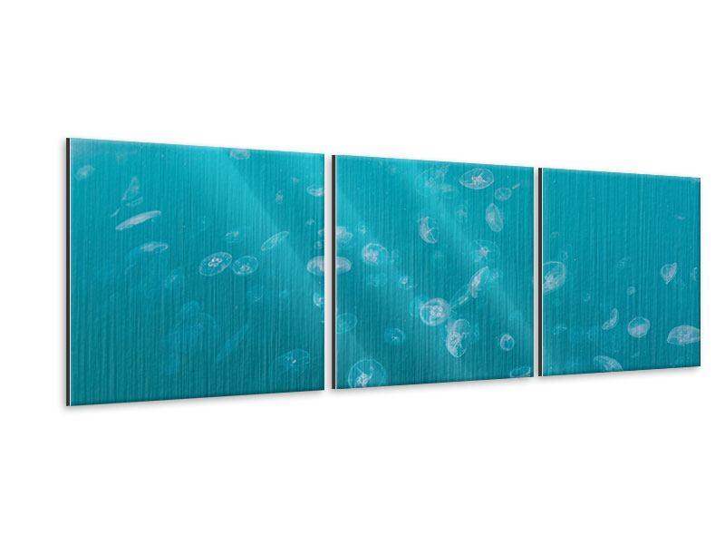 Panorama Metallic-Bild 3-teilig Viele Quallen