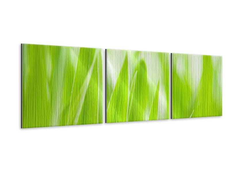 Panorama Metallic-Bild 3-teilig Gras XXL