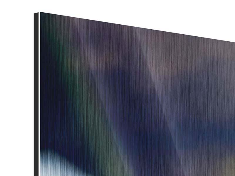 Panorama Metallic-Bild 3-teilig Schlange