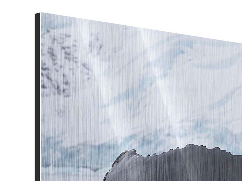 Panorama Metallic-Bild 3-teilig Der Buckelwal