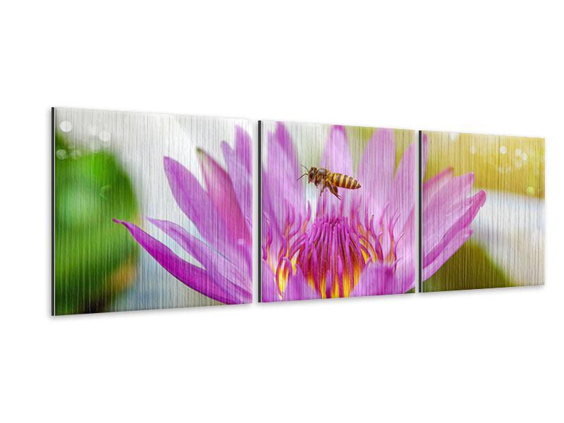 Panorama Metallic-Bild 3-teilig Die Lotus mit Biene