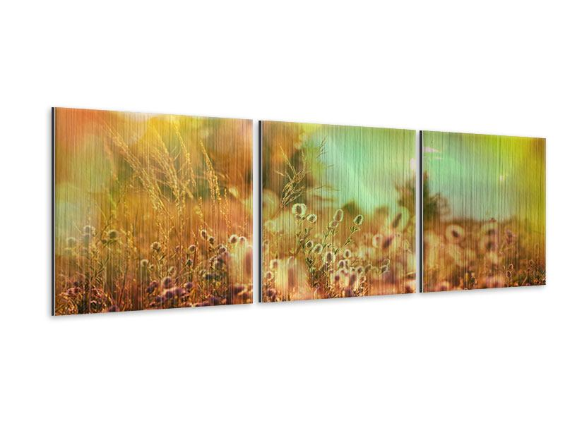 Panorama Metallic-Bild 3-teilig Blumenwiese in der Abenddämmerung