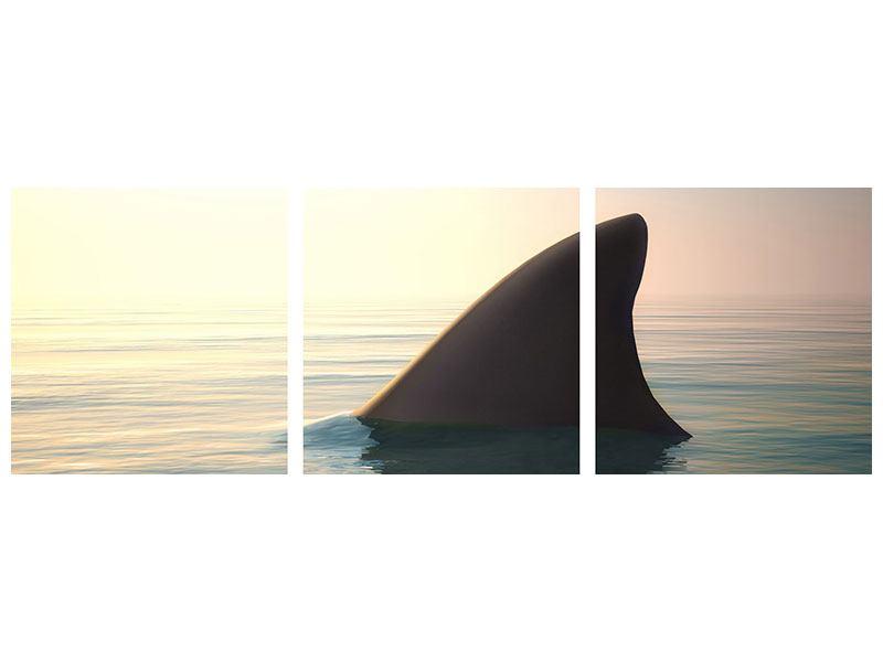Panorama Metallic-Bild 3-teilig Haifischflosse