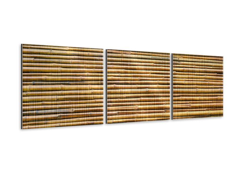 Panorama Metallic-Bild 3-teilig Bambus