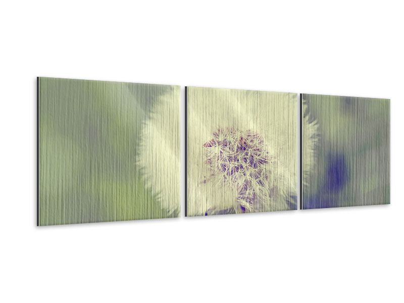 Panorama Metallic-Bild 3-teilig Die Pusteblume