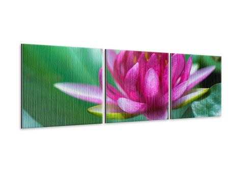 Panorama Metallic-Bild 3-teilig Lotus in Pink