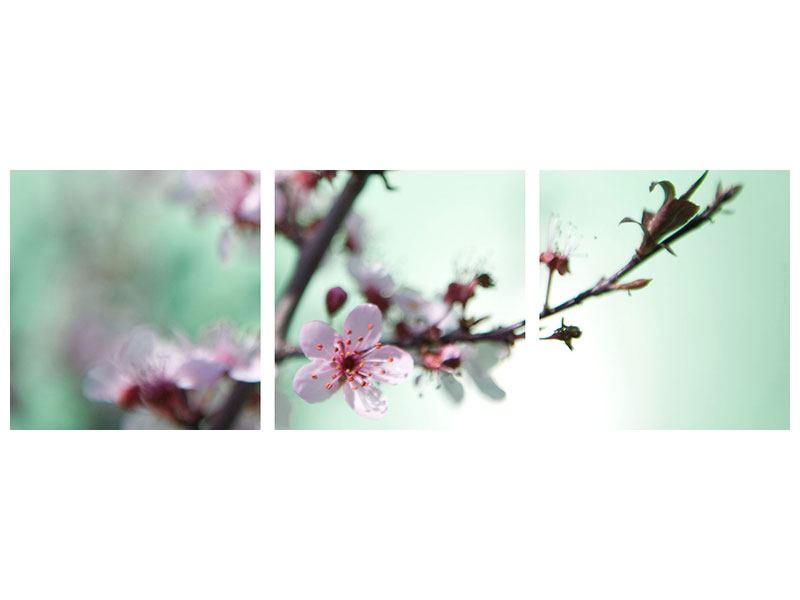 Panorama Metallic-Bild 3-teilig Die japanische Kirschblüte