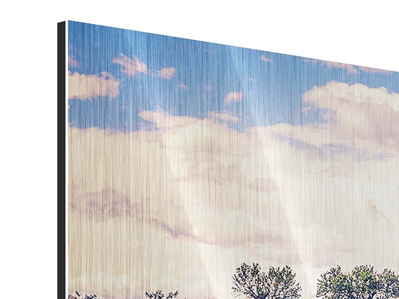 Panorama Metallic-Bild 3-teilig Das Lavendelfeld