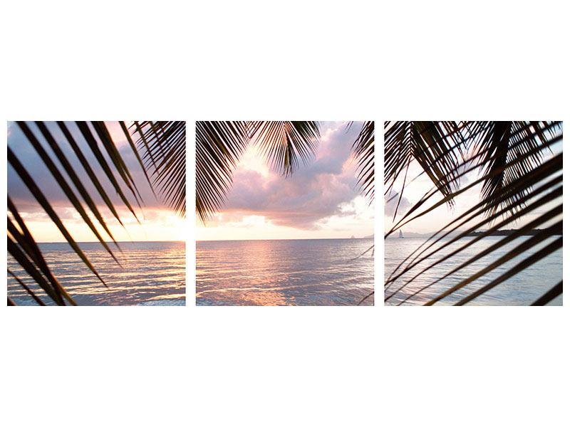 Panorama Metallic-Bild 3-teilig Unter Palmenblätter