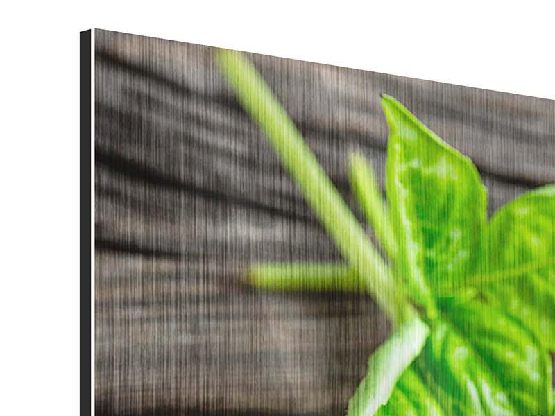 Panorama Metallic-Bild 3-teilig Basilikumblätter