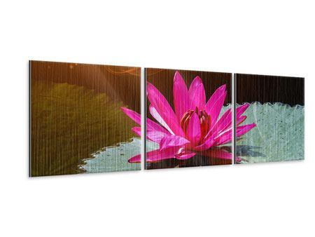 Panorama Metallic-Bild 3-teilig Der Frosch und das Seerosenblatt