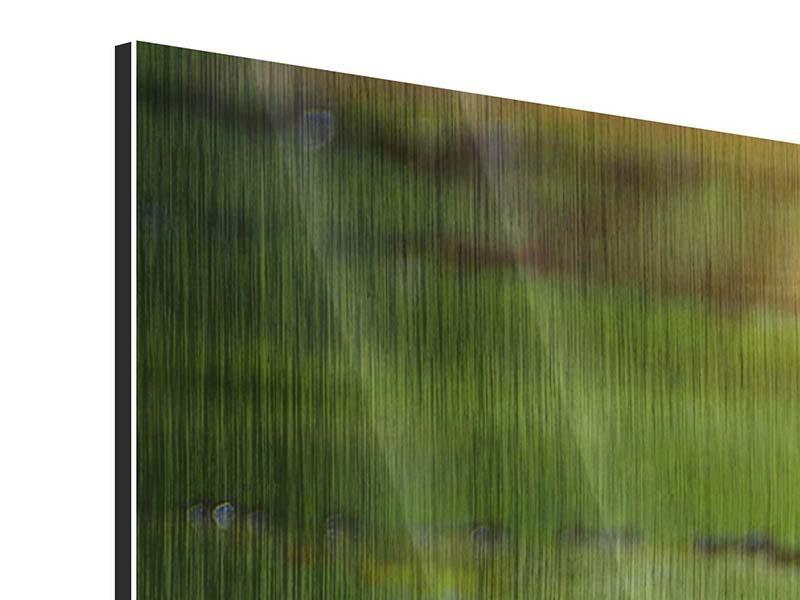 Panorama Metallic-Bild 3-teilig Lilienspiegelung