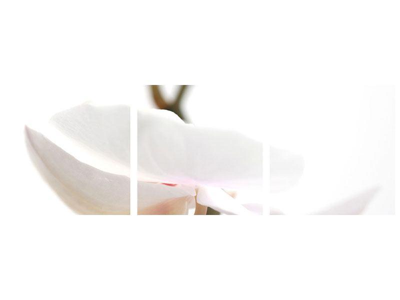 Panorama Metallic-Bild 3-teilig XXL Orchideenblüte