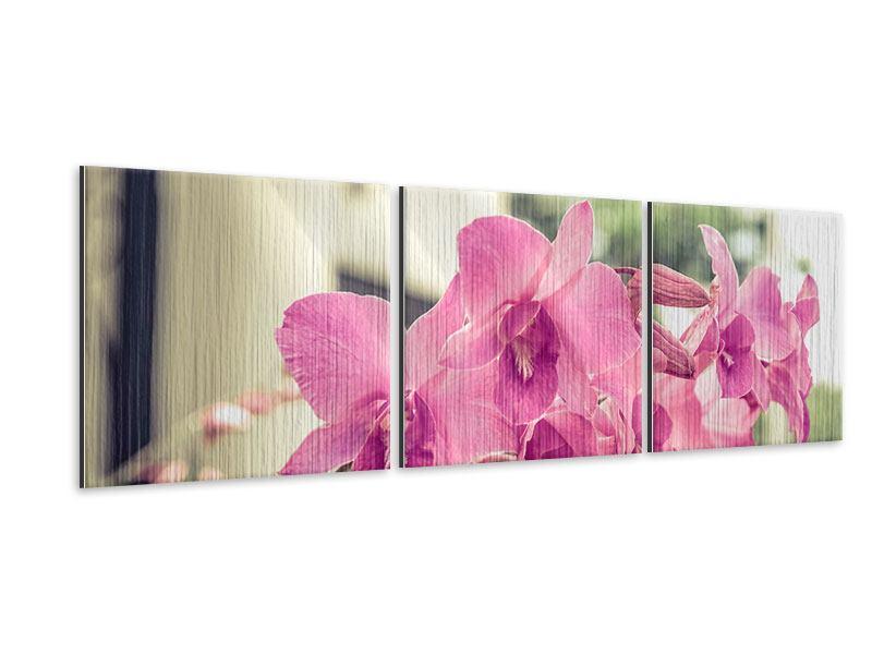 Panorama Metallic-Bild 3-teilig Ein Fensterplatz für die Orchideen