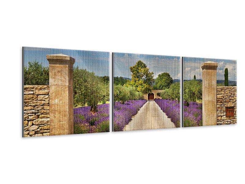 Panorama Metallic-Bild 3-teilig Lavendel-Garten