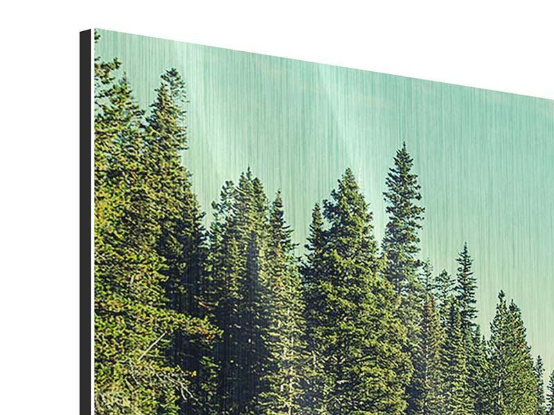 Panorama Metallic-Bild 3-teilig Die Musik der Stille in den Bergen