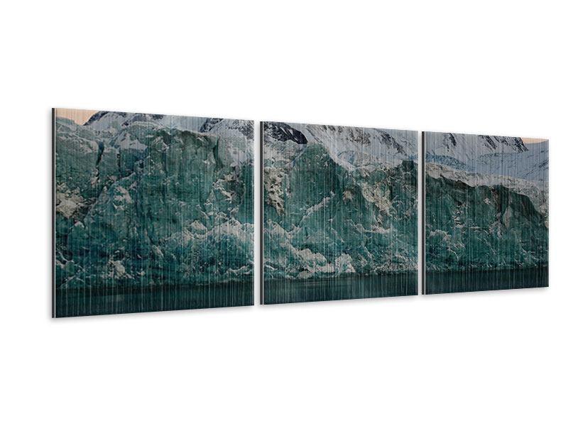 Panorama Metallic-Bild 3-teilig Die Antarktis