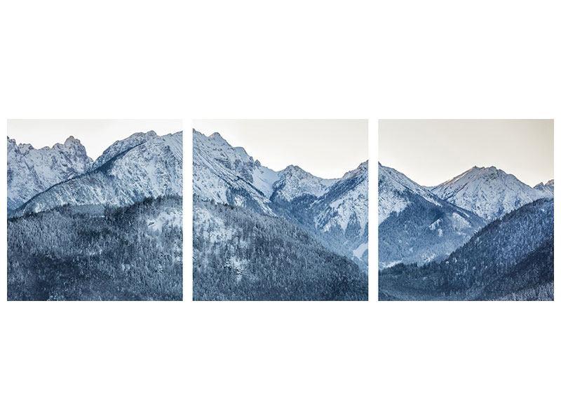 Panorama Metallic-Bild 3-teilig Schwarzweissfotografie Berge