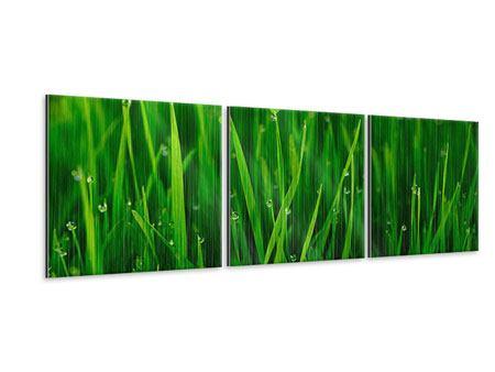 Panorama Metallic-Bild 3-teilig Gras mit Morgentau