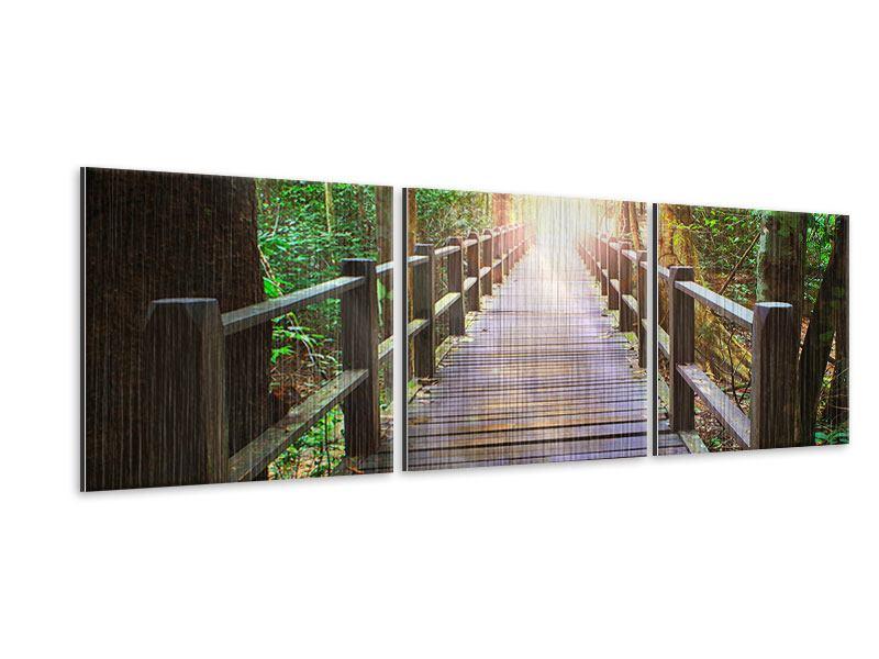 Panorama Metallic-Bild 3-teilig Die Brücke im Wald