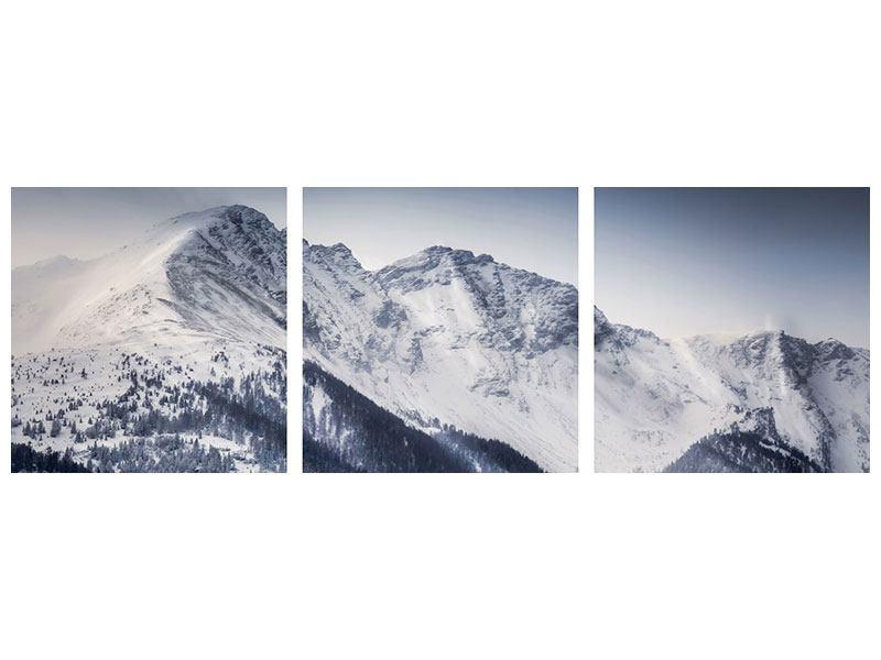Panorama Metallic-Bild 3-teilig Die Berge der Schweiz