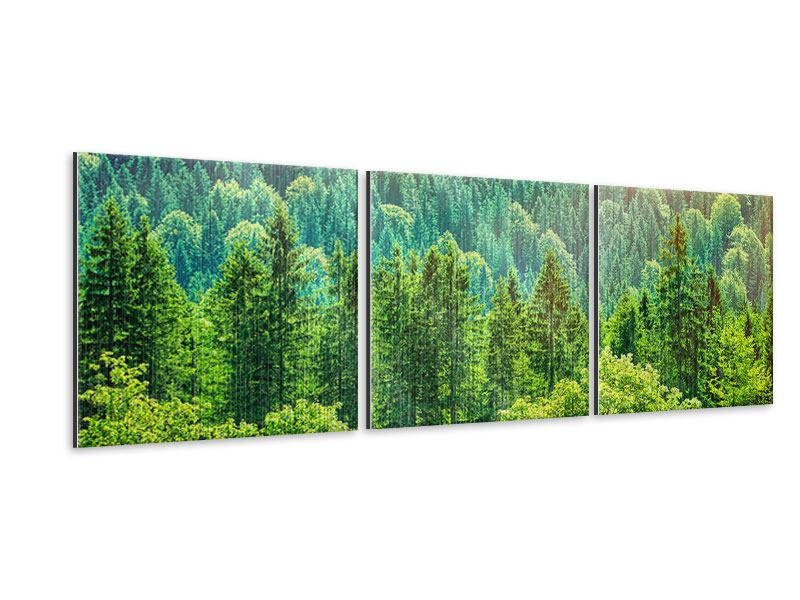 Panorama Metallic-Bild 3-teilig Der Waldhügel