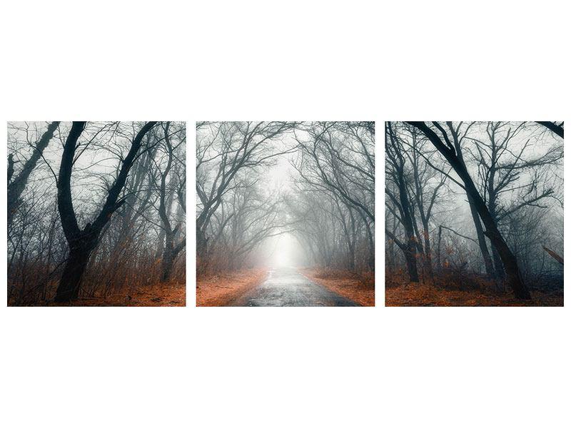 Panorama Metallic-Bild 3-teilig Mysteriöse Stimmung im Wald