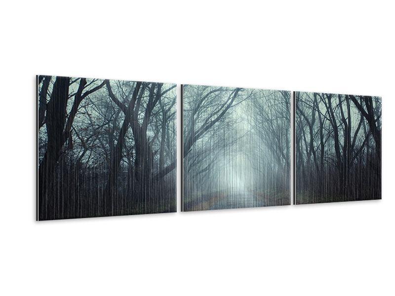 Panorama Metallic-Bild 3-teilig Nebelwald