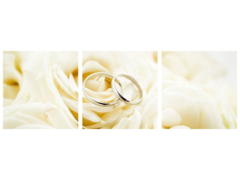 Panorama Metallic-Bild 3-teilig Trauringe auf Rosen gebettet