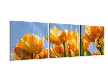 Panorama Metallic-Bild 3-teilig Märchenhafte Tulpen