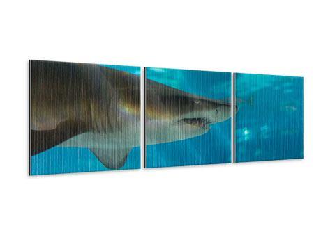 Panorama Metallic-Bild 3-teilig Der Haifisch