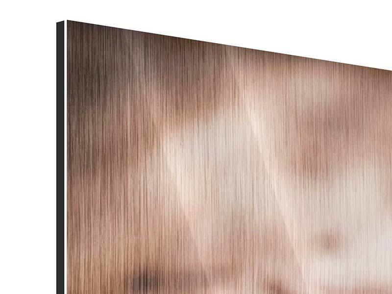 Panorama Metallic-Bild 3-teilig Tiramisu