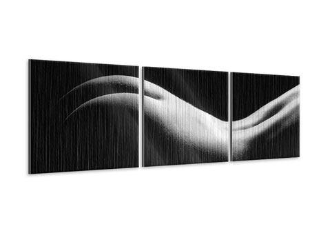 Panorama Metallic-Bild 3-teilig Nude