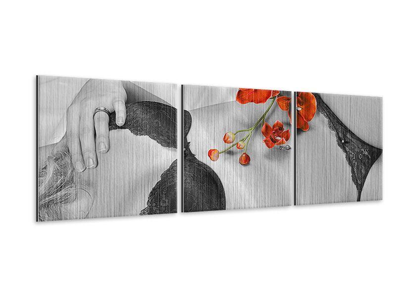 Panorama Metallic-Bild 3-teilig Dessous-Schönheit