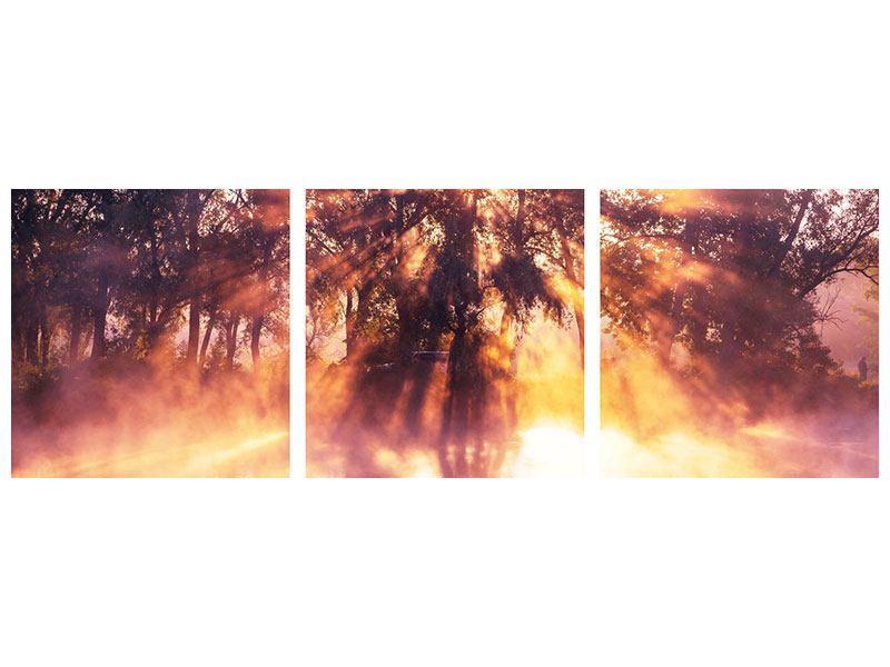 Panorama Metallic-Bild 3-teilig Die Waldspiegelung