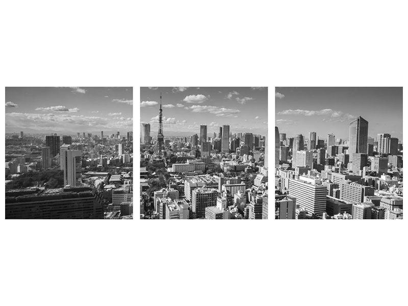Panorama Metallic-Bild 3-teilig Tokio