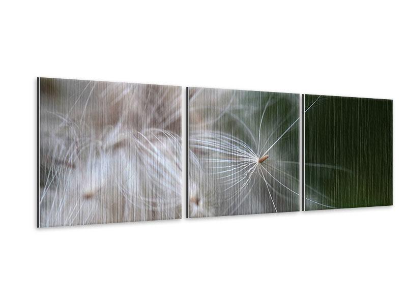 Panorama Metallic-Bild 3-teilig Close up Blütenfasern