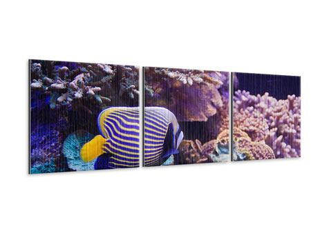 Panorama Metallic-Bild 3-teilig Faszination Unterwasser
