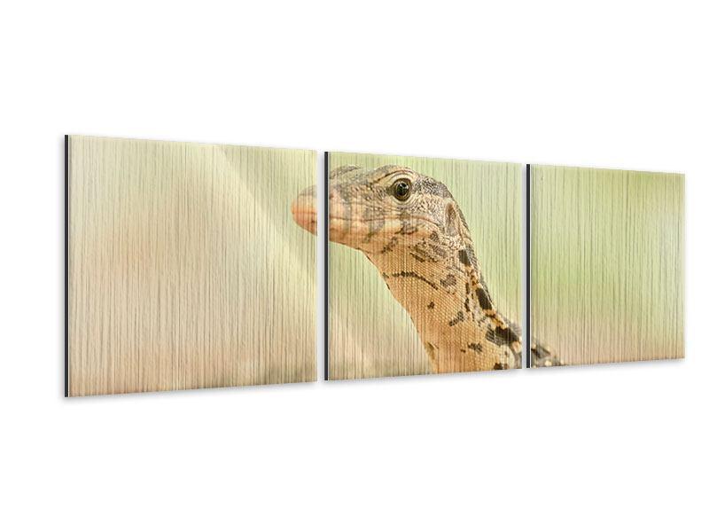 Panorama Metallic-Bild 3-teilig Eidechse