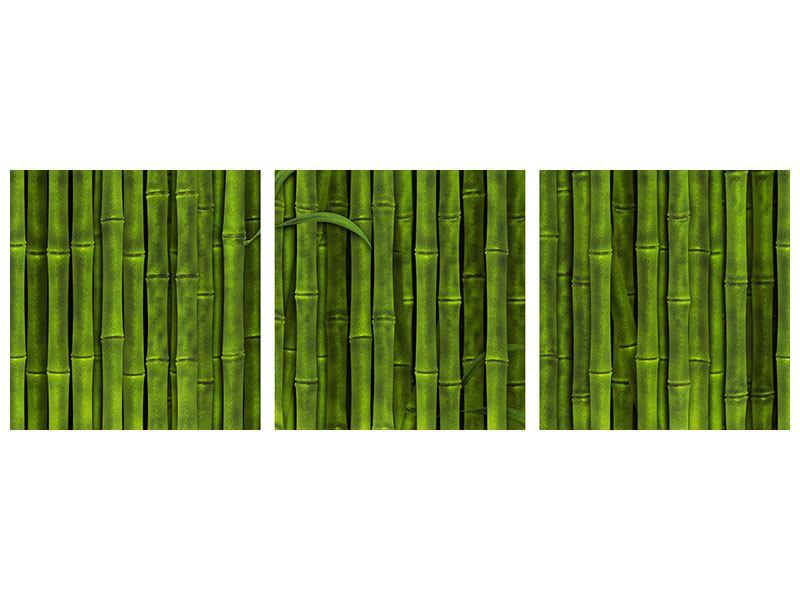 Panorama Metallic-Bild 3-teilig Wasserspiegelung Bambus
