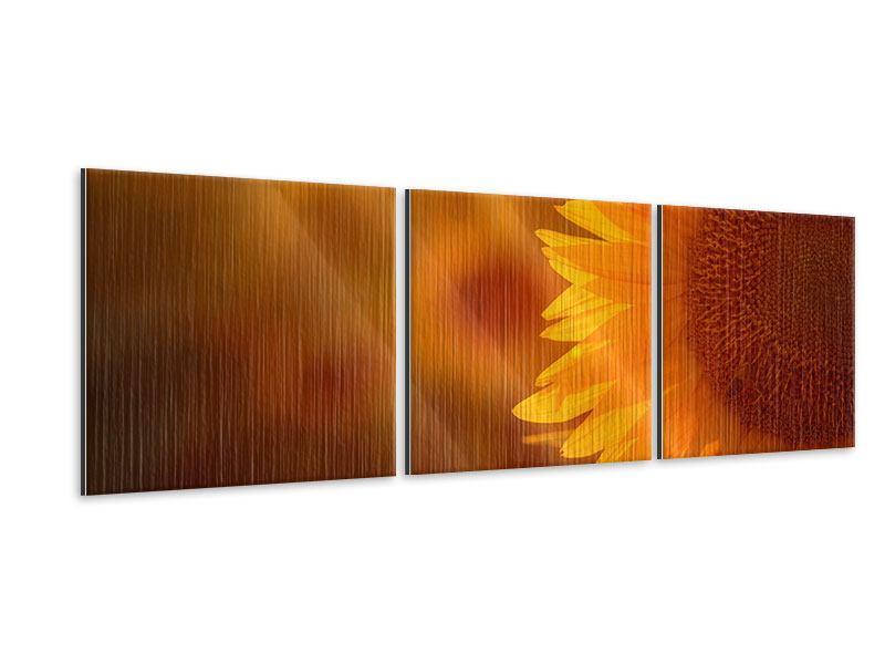 Panorama Metallic-Bild 3-teilig Macro-Sonnenblume