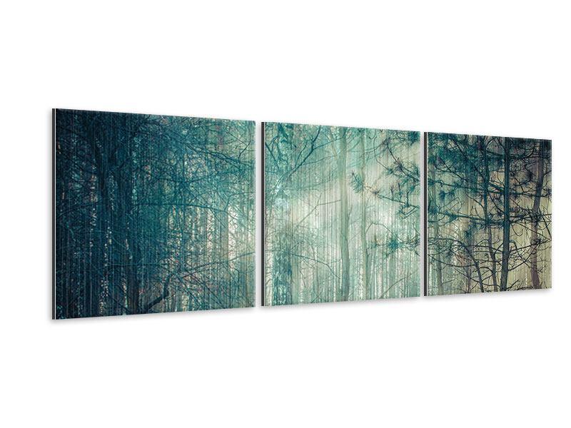 Panorama Metallic-Bild 3-teilig Pinienwald