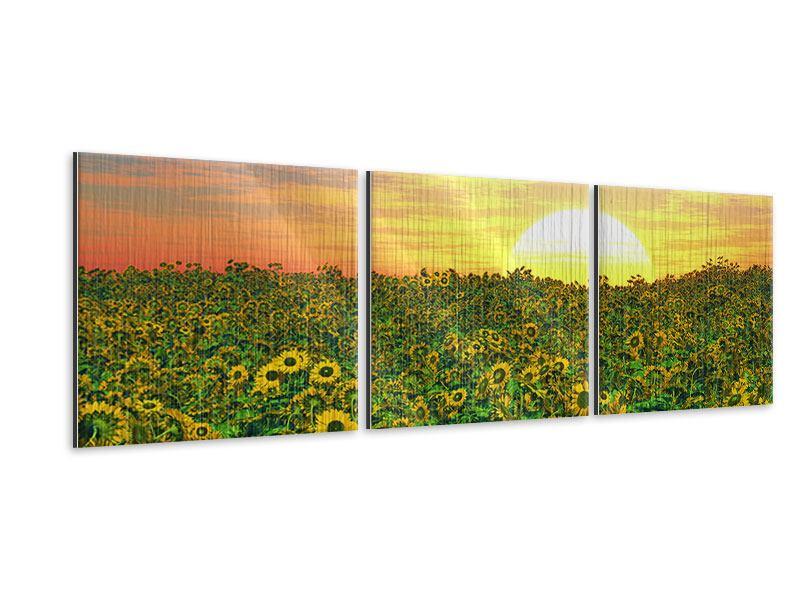 Panorama Metallic-Bild 3-teilig Blumenpanorama bei Sonnenuntergang