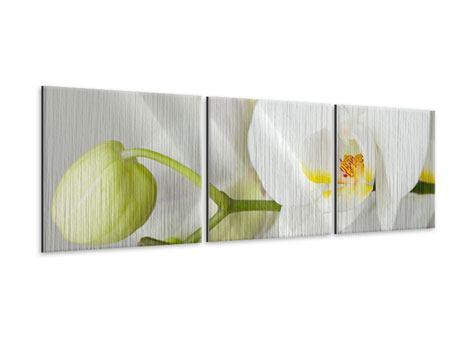 Panorama Metallic-Bild 3-teilig Riesenorchidee